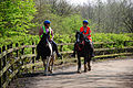 Flickr - ronsaunders47 - PENNINGTON FLASH .2 OUT RIDING.2.jpg