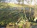 Footbridge over sike near Crowberry Hall - geograph.org.uk - 685739.jpg