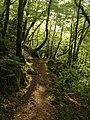 Footpath near Great Rock - geograph.org.uk - 1299793.jpg