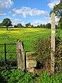 Footpath opposite Ogston Reservoir - geograph.org.uk - 266455.jpg