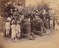 Four seated Elephants with Western travelers and attendants in Jaipur.jpg