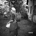 Frančiška, Zakojca nese lempo za vodo. Tako nosijo vodo za v snožet 1954.jpg