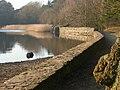 Frensham Little Pond - geograph.org.uk - 5476.jpg