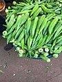 Fresh Okro vegetables.jpg