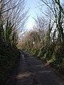 Gale Road - geograph.org.uk - 1206036.jpg
