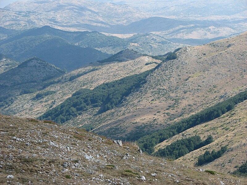Galičica