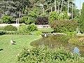 General view - Parc de la Tête d'Or - DSC05264.jpg