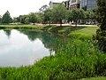 GeorgiaSouthernUniversityViewingLibraryAcrossLakeSummer2008.jpg