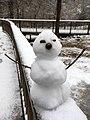 Georgia snow IMG 4200 (38887918612).jpg