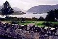 Glenveagh National Park - Lough Beagh - geograph.org.uk - 1328832.jpg