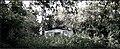 Goose Creek Trail Trailer in the wood.jpg