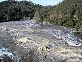 Gorge Flood 2009.JPG