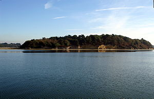 Green Island (Dorset) - Image: Green Island Poole Harbour