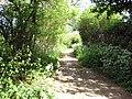Green Lane approaching Codling's Lane - geograph.org.uk - 1293766.jpg
