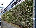 Green wall, Parr Street, Liverpool 2.jpg