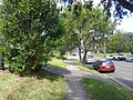 Greenacre NSW 2190, Australia - panoramio (8).jpg