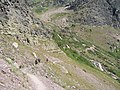 Gunsight Pass Trail on North Wall of Lake Ellen Wilson Cirque - panoramio.jpg