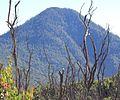 Gunung Papandayan.jpg