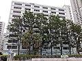HK Kln 九龍城區 Kowloon City District 土瓜灣道 To Kwa Wan Road 新碼頭街 San Ma Tau Street 巴士總站 Bus Terminus 停車場 carpark June 2020 SS2 35.jpg