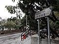HK ML 半山區 Mid-levels 地利根德里 Tregunter Path nesr May Road February 2020 SS2 02.jpg