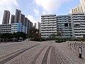 HK TKO 將軍澳 Tseung Kwan O 唐明街公園 Tong Ming Street Park November 2019 SS2 25.jpg