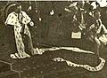 Haakon VII in 1906.jpg