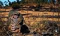 Hadsar fort Hanuman (Pratik Butte Patil).jpg