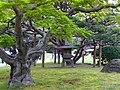 Hamarikyu Onshi Teien (浜離宮恩賜庭園) - panoramio.jpg