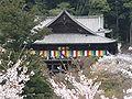 Hasedera (Sakurai) hondo3.jpg