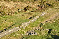 Haytor Granite Tramway near Haytor (8706).jpg