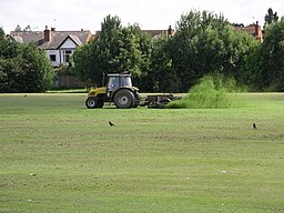 Hearsall common grass cutting 8g07