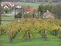Hegymagas, 8265 Hungary - panoramio (14).jpg