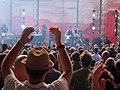 Heimatsound-Festival 2014 Publikum.jpg