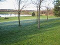 Hetton Lyons Country Park - geograph.org.uk - 314163.jpg