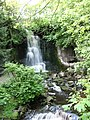Hidden waterfall at Harmby - geograph.org.uk - 439795.jpg