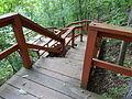 High Falls State Park southern trail c.JPG