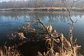 Hochwassermarken der Mulde k2.jpg