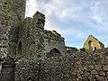 Hore Abbey, Caiseal, Éire - 46533568782.jpg
