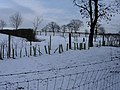 Horse country in the snow - geograph.org.uk - 1158384.jpg