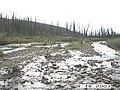 Hosford Creek Water Quality Testing, Yukon-Charley Rivers, 2003 (a9bfaeb4-0470-4770-8423-be6b4a291123).jpg
