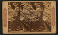 Hot house scene in California, from Robert N. Dennis collection of stereoscopic views.png