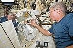 ISS-53 Mark Vande Hei works inside the Kibo lab.jpg
