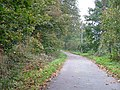 Icknield Way - Westmill Lane - geograph.org.uk - 71812.jpg
