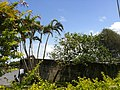Iguape - SP - panoramio (176).jpg