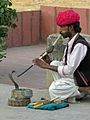India-6568 - Flickr - archer10 (Dennis).jpg