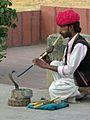 India-6568 - Flickr - archer10 (Dennis).jpg