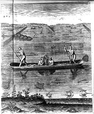 Fishing weir - Algonquin fishing with weir and spears in a dugout canoe. After a drawing by colonist, John White (1585)