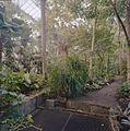 Interieur, overzicht van een deel van de tropische kas met ventilatieroosters - Haren - 20334341 - RCE.jpg