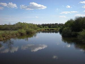 Izh River - Image: Izh River