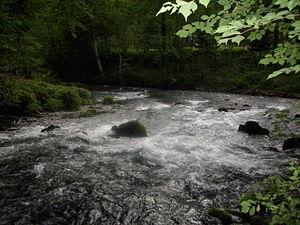 Pliva (river) - Image: Izvor Plive 02